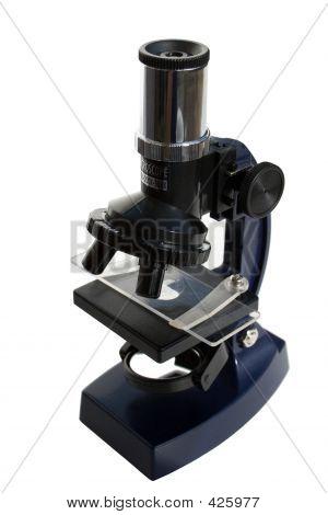 Microscope (p)