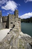 picture of dartmouth  - a view of dartmouth castle on the estuary of the river dart devon - JPG