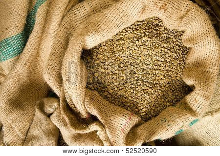 Raw Coffee Seeds Bulk Burlap Bag Agriculture Bean Produce