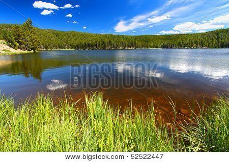 Sibley Lake Bighorn National Forest