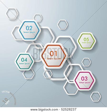 White Hexagons Infographic