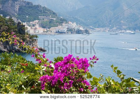 Flowers In The Amalfi Coast, Italy