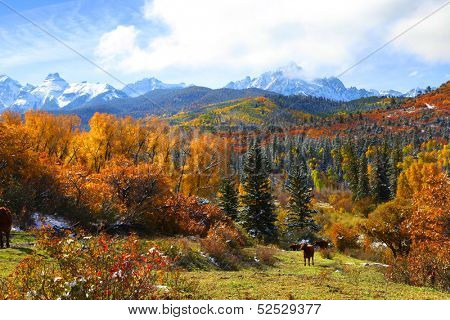 Scenic mount Sneffles landscape in Colorado