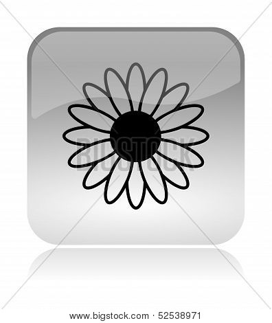 Flower Spring Icon