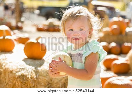 Adorable Baby Girl Holding a Pumpkin in a Rustic Ranch Setting at the Pumpkin Patch.