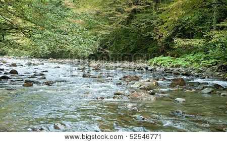 Mountain River. Caucasus
