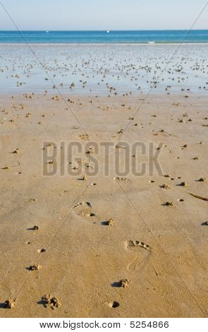 Low Tide. Footprints And Lug Worm Casts On A Beach
