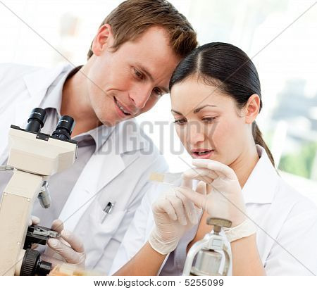 Scientists Looking At A Slide Under A Microscope