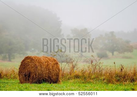 Mountain Farm Land In Virginia Mountains