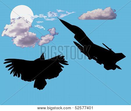 Aircraft And Bird Eagle