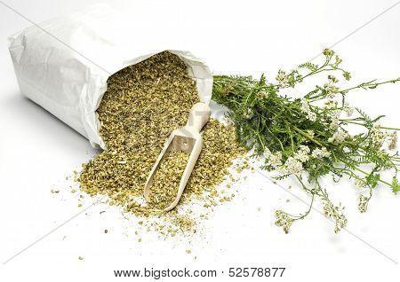 Bag with dried and fresh yarrow