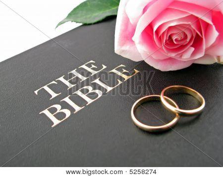 Bible Rose Rings