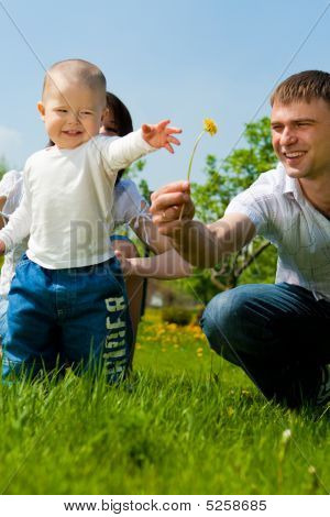 Father Giving Flower To His Son