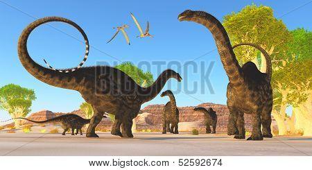 Apatosaurus Forest