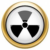 image of radium  - Shiny glossy icon with black design on white and gold background - JPG
