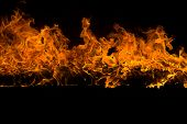 pic of ember  - Blazing flames over black background - JPG