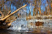 foto of illinois  - Natural ice sculptures along the Kishwaukee River in northern Illinois - JPG