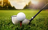 stock photo of clubbing  - Golf club and ball in grass - JPG