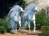 stock photo of fillies  - Two buck unicorns run together through a beautiful magical forest - JPG