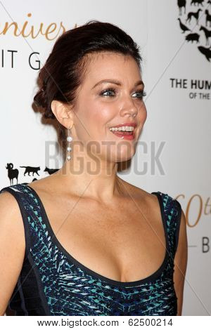 LOS ANGELES - MAR 29:  Bellamy Young at the Humane Society Of The United States 60th Anniversary Gala at Beverly Hilton Hotel on March 29, 2014 in Beverly Hills, CA