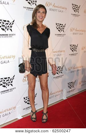 LOS ANGELES - MAR 29:  Elisabetta Canalis at the Humane Society Of The United States 60th Anniversary Gala at Beverly Hilton Hotel on March 29, 2014 in Beverly Hills, CA