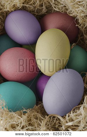 Painted Easter Eggs Nesting