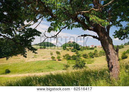 Summer landscape by Seitenroda