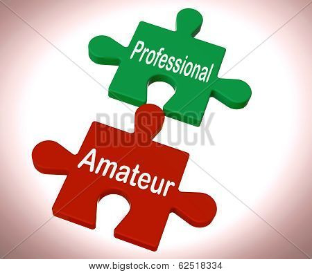 Professional Amateur Puzzle Shows Expert And Apprentice