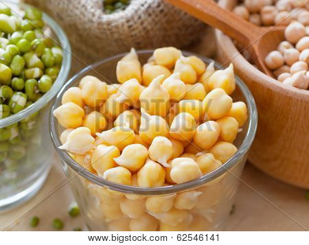 Chick Peas And Green Mung Bean Sprouts