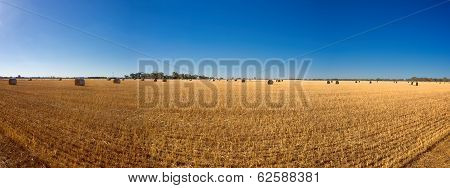 hay bails on an an Australian  farm