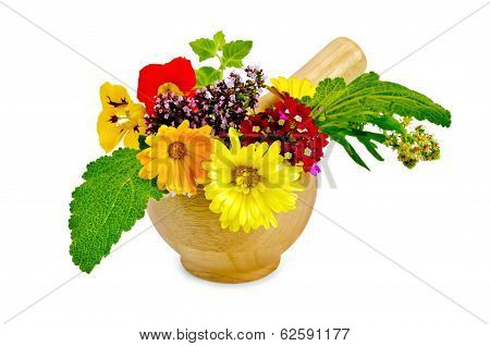 Herbs And Flowers In A Mortar
