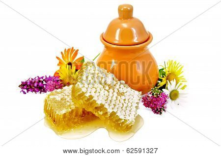 Honeycomb With Pitcher And Flowers