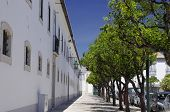 image of faro  - The center city of Faro Algarve Capital Portugal - JPG