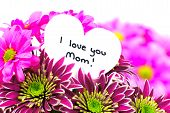 stock photo of i love you mom  - I love you Mom card amongst a vibrant bouquet of flowers - JPG