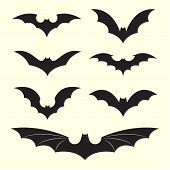 pic of bat wings  - Vector group of bat on white background - JPG