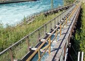 Whitehorse Salmon Fishladder Yukon River Canada