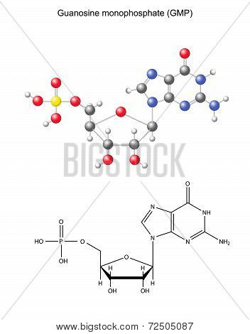 Structural Chemical Formula And Model Of Guanosine Monophosphate