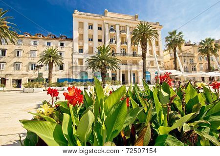 Split Riva Waterfront Nature And Architecture