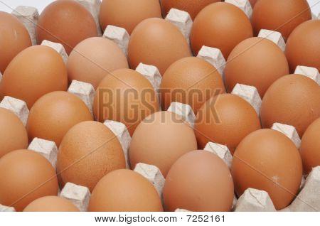 Eggs In An Egg Box
