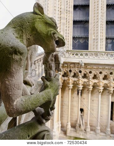 Gargoyle Eating