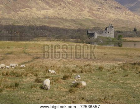 Kilchurn Castle by the Loch