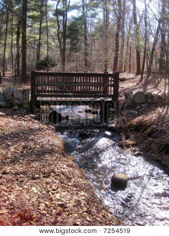 Ponte sobre água roda