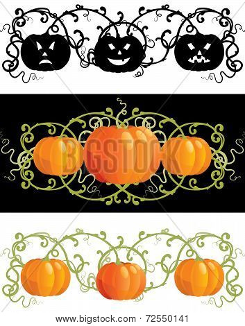 Three pumpkins for thanksgiving