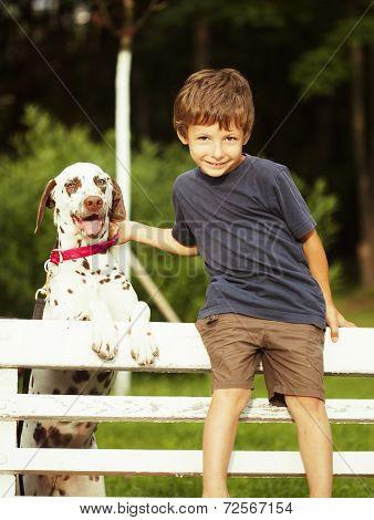 little cute boy with dalmatian dog
