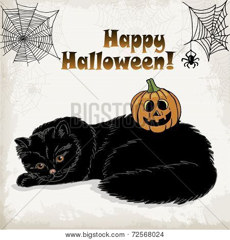 Halloween Card Template With A Cat, Pumpkin, Spider And Spider Web. Vector Illustrations