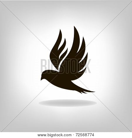 Black Bird Isolated With Outstretched Wings