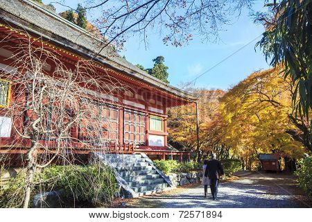 Tanzan Shrine At Fall For Adv Or Others Purpose Use