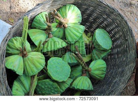 Basket Of Lotus Pods For Sale In A Cambodian Market