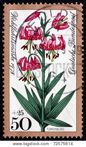 Postage Stamp Germany 1978 Turk's Cap Lily, Alpine Flower