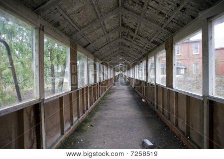 Urban Decay Asyl